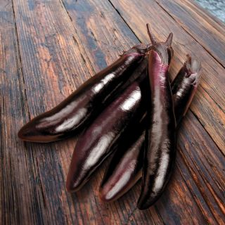 Shikou Eggplant Thumbnail
