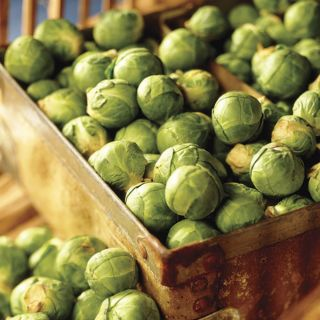 Nautic Organic Brussels Sprouts Thumbnail