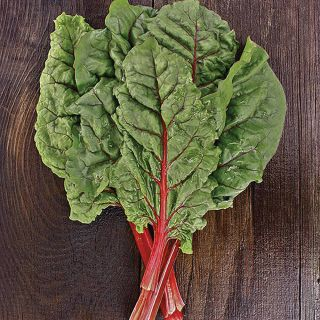Ruby Red Organic Swiss Chard Thumbnail