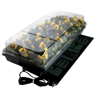 Germination Station with Heat Mat Thumbnail