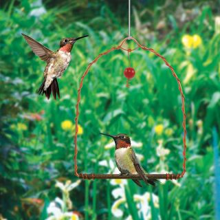 Copper Hummingbird Swing Thumbnail