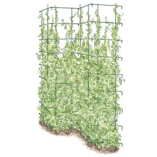 Tall Expandable Pea Fence Thumbnail
