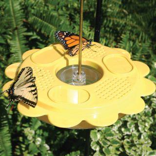 Flutterby Butterfly Feeder Thumbnail