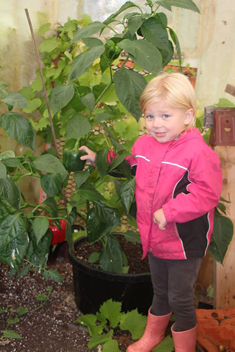 Little girl standing in front of Chesapeak Peppers in a Greenhouse