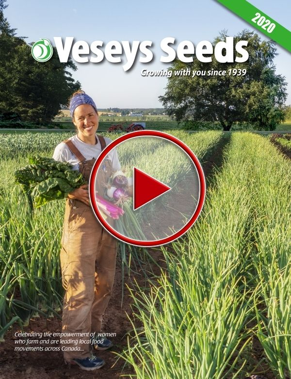 2020 Veseys Seed Catalogue