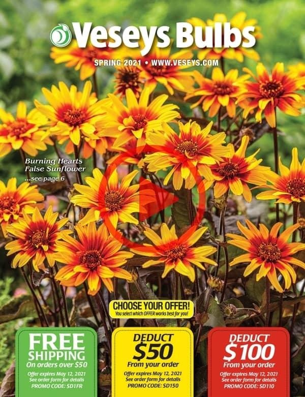 2021 Spring Bulbs & Perennials Catalogue