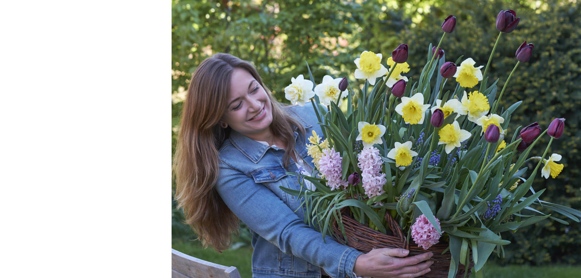Fall Bulbs now available