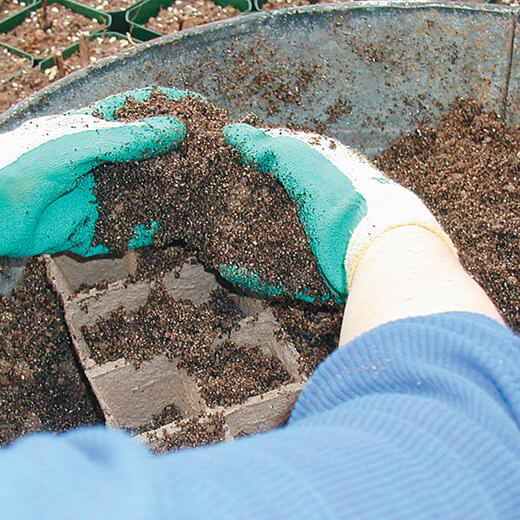 Image of soil preparation for seeding