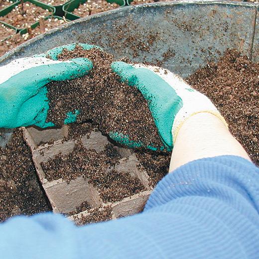 Image of soil preparation for seeding