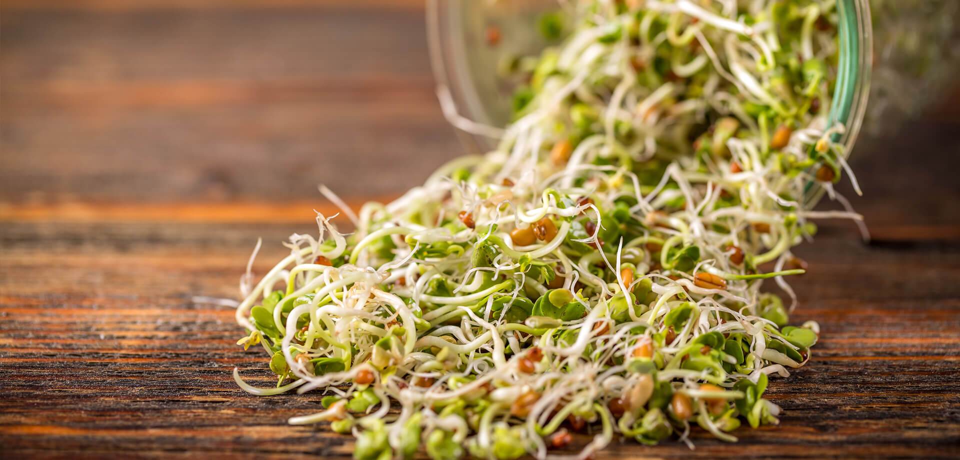 Sprouts for health